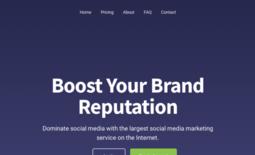 Socialmediapanel
